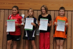 TT-Kreiseinzelmeisterschaften 2012