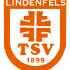 Wappen TSV orange