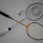 Abteilung Badminton