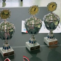 Kreisjahrgangsmeister-Pokale-2014
